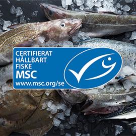 100% MSC-märkt vildfångad fisk från Findus