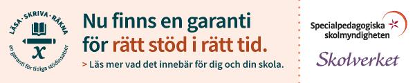 Annons: Skolverket & SPSM Läsa, skriva, räkna Nu finns en garanti för rätt stöd i rätt tid